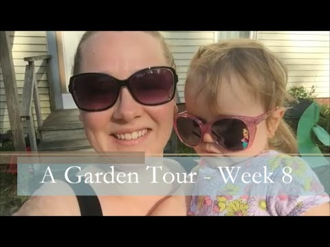 A Garden Tour – Week Eight