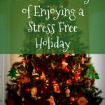 The How and Why of Enjoying a Stress Free Holiday