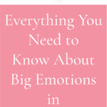 Everything You Need to Know about Big Emotions in Homeschooling