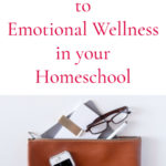 An Introduction to Emotional Wellness in Homeschool