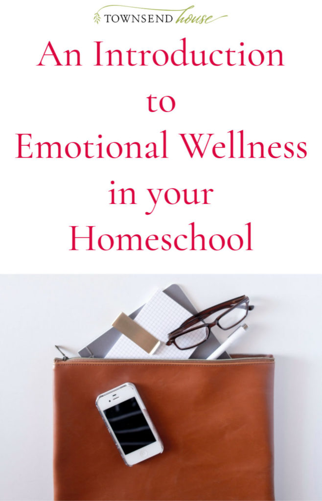 An Introduction to Emotional Wellness in your Homeschool