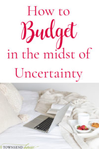 Budget in the Midst of Uncertainty