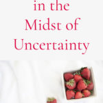 How to Plan in the Midst of Uncertainty
