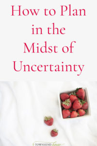Plan in the Midst of Uncertainty