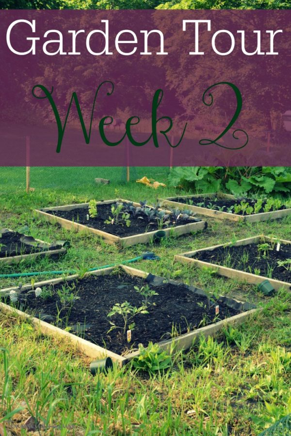 2017 Garden Tour – Week 2