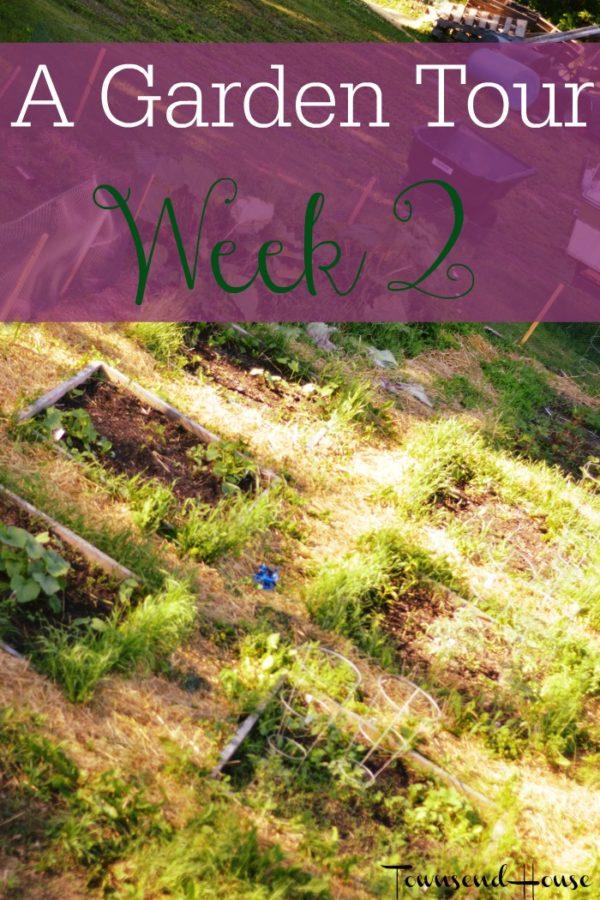 A Garden Tour – Week Two