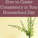 How to Create Consistency in Your Homeschool Day