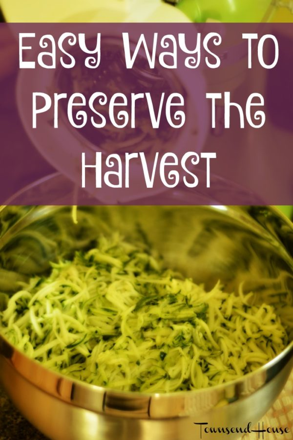 Easy Ways to Preserve the Harvest