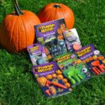 Pumpkin Masters Feature and giveaway!