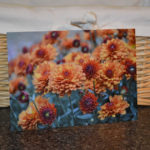 Barani Farm Etsy shop feature and giveaway!