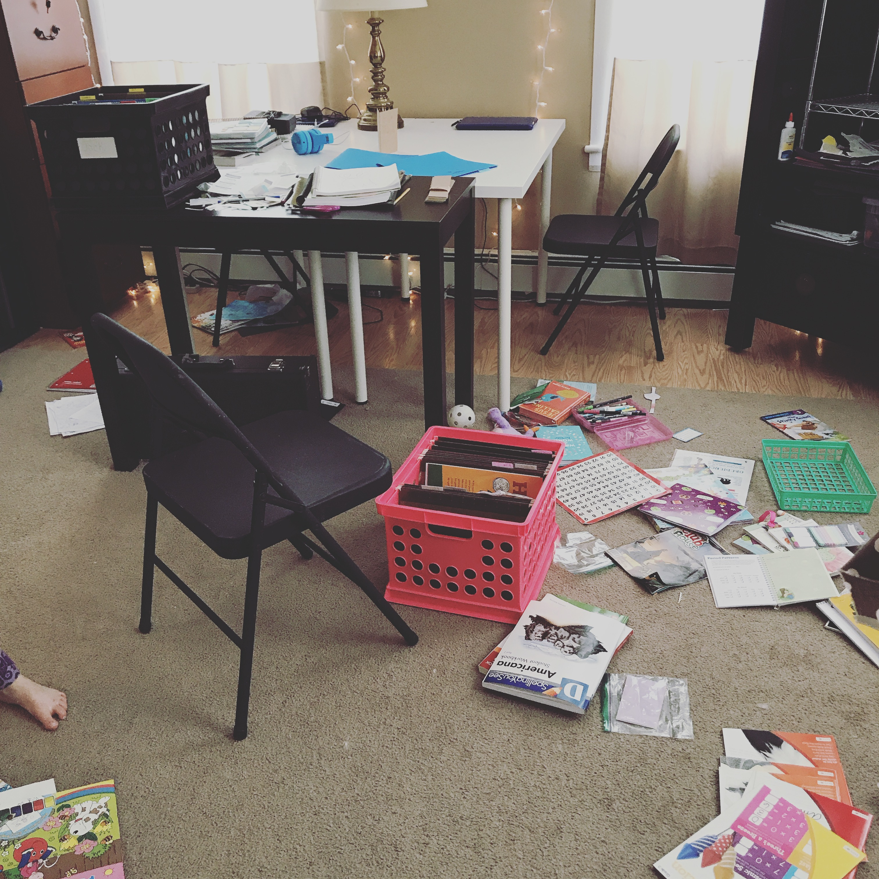 Project Re-organize the Homeschool Curriculum