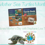 Mother Sea Turtles Month!